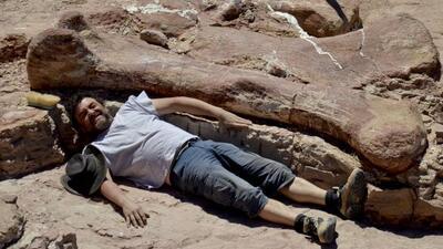Los enormes restos de un dinosaurio encontrados en Argentina