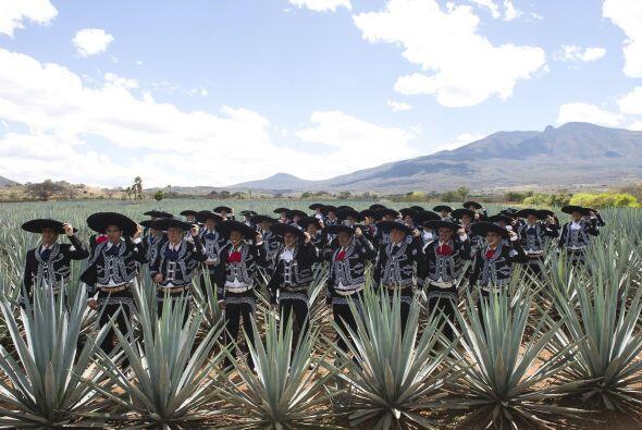 Los jugadores, cuerpo técnico y directivos de las Chivas se fuero...