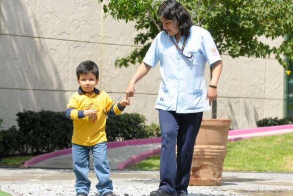 Se busca rehabilitarlos física y emocionalmente. los paseos en las áreas...