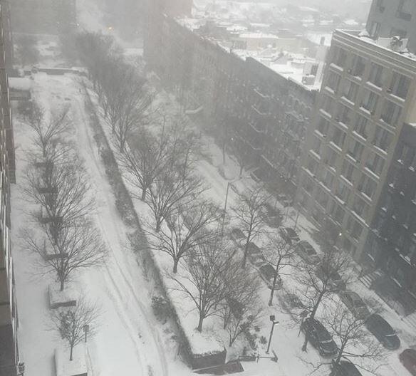 Estas son imágenes del sábado en la mañana en Central Park y zonas aleda...