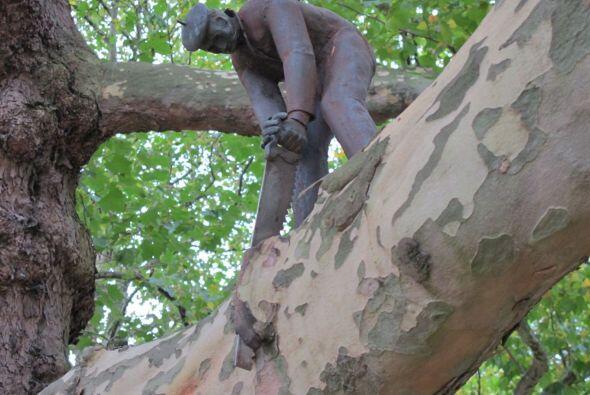 Hombre serrando una rama, Amsterdam (Holanda)