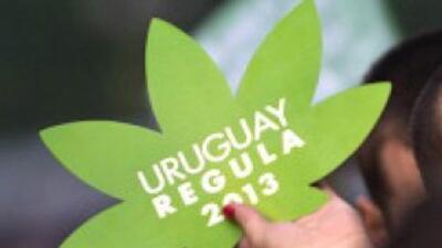 Uruguay ya comienza a experimentar cambios tras los cambios en la legisl...