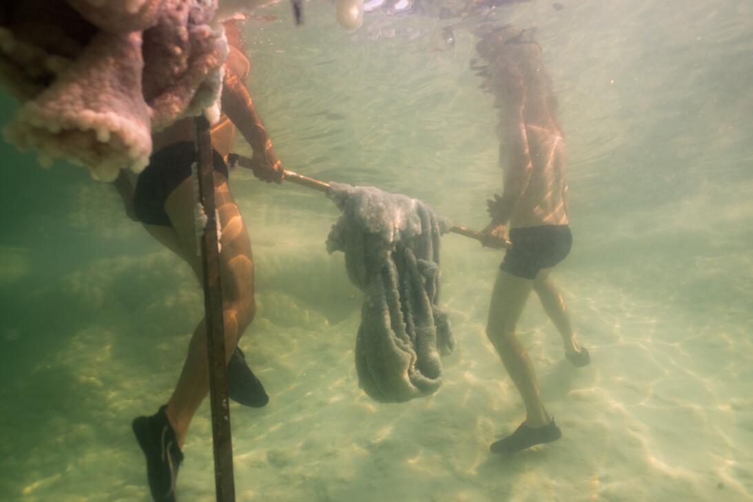 ¿Qué pasa si sumerges un vestido en el Mar Muerto? Esta artista lleva 15...