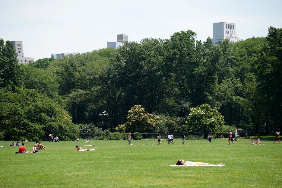 """En el """"Sheep Meadow"""", en Central Park, ya los visitantes toman el sol."""