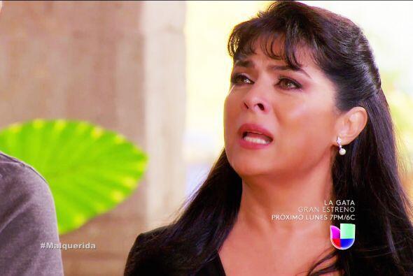 ¿Darás un paso atrás Cristina? ¿Le harás caso a Esteban e intentarás sal...