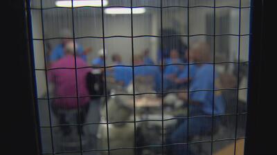 Cómo están usando la música para rehabilitar prisioneros de cárceles de máxima seguridad en EEUU