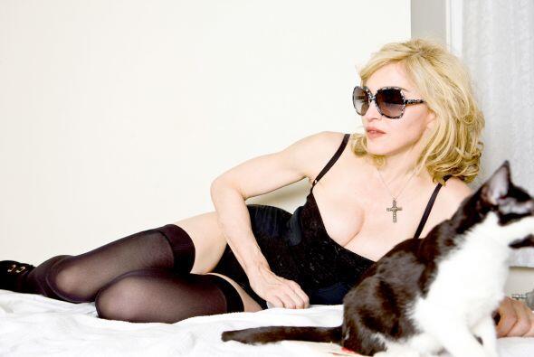 Los lentes de Dolce & Gabbana son mas populares ya casi que la ropa