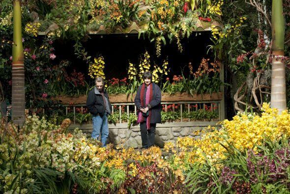 El jardín botánico de Nueva York, localizado en el Bronx, cuenta con una...