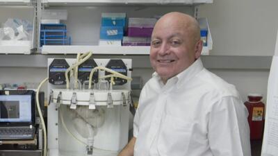 Investigadores de Texas adelantan con éxito los experimentos con pulmones artificiales