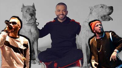 Nacho, Alexis & Fido posaron con unos perros teñidos y a internet no le gustó mucho