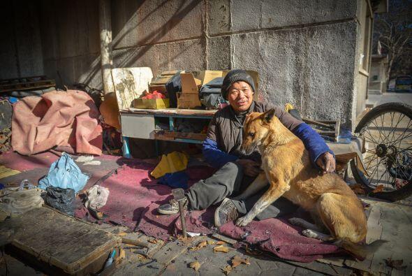 Este perro no sólo es mascota, sino que es fiel compañero...