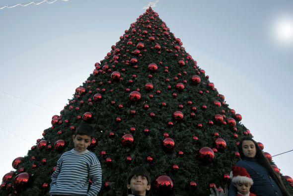 En esta imagen unos niños palestinos visitan el árbol de Navidad en la c...