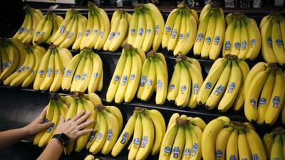 Chiquita admitió haber pagado a las FARC alrededor de 220,000 dólares, p...