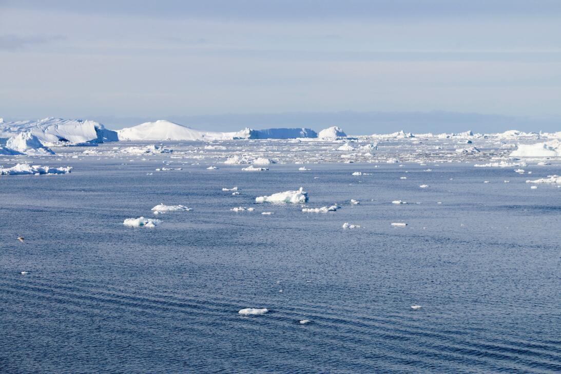 Trabajar en el océano y tener el privilegio de vivir para contarlo IMG_3...