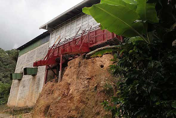 Con una tradición de unos dos siglos, Costa Rica tiene una forma muy pec...