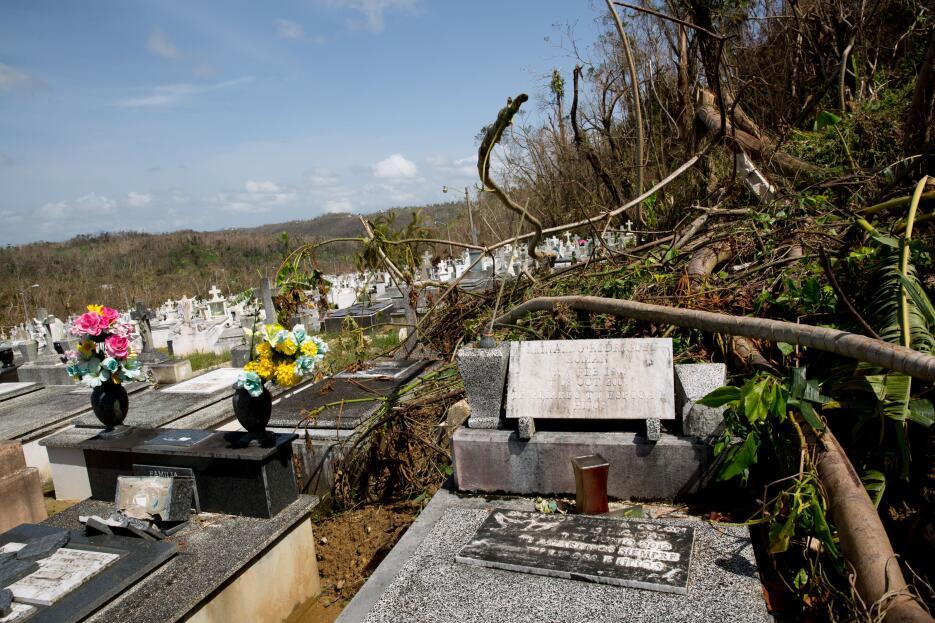Puerto Rico Lares