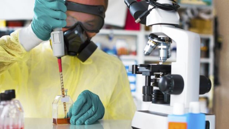 La detección de un paciente con síntomas semejantes a los del ébola en B...