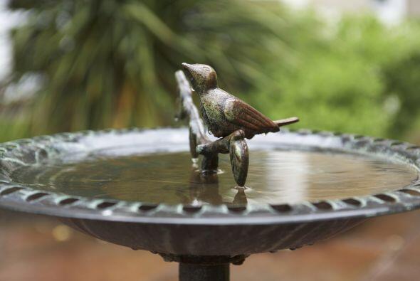 Agua. Suele considerarse una fuente de purificación, tanto literal como...