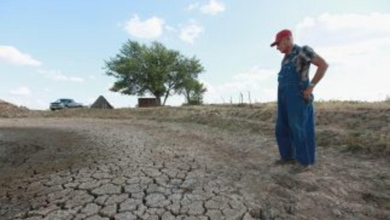 A la escasez de lluvias se suman las temperaturas récord que han afectad...