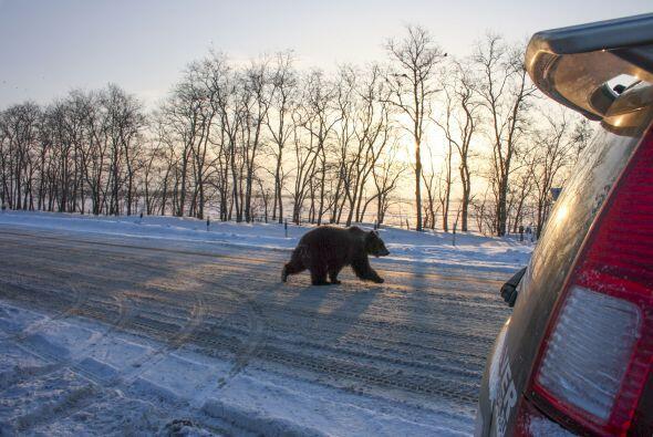 Sergey de 37 años, iba manejando por las calles de la ciudad de Azov en...