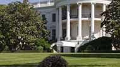 Barack Obama reveló el valor de su perro Bo: $1,600, aunque se lo regala...