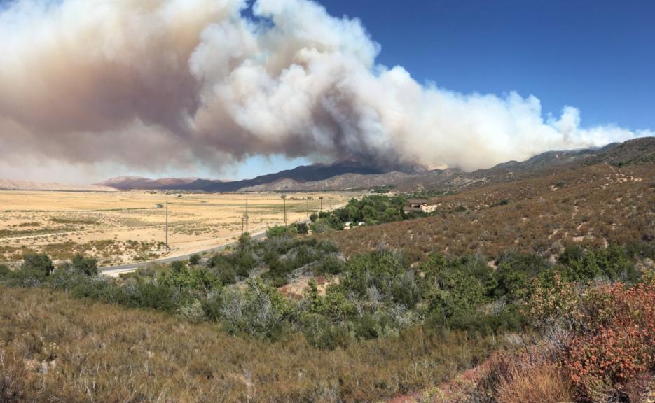 Las llamas avanzan sin control y han consumido 1,000 acres.