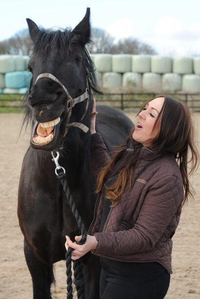 Lo importante es que los caballos estén sanos, ¿no lo crees?