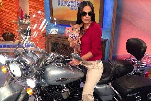 """""""Súbete a mi moto... ¡¡¡Y vámonos a Chihuahua!!! ¿Verdad, @honeyberrytv?..."""