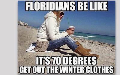 Memes Florida