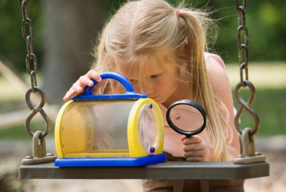 Sé curioso: El mundo es una gran signo de interrogación y los niños no d...