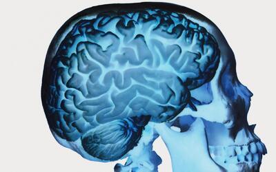 Las aplicaciones que ayudan a mejorar las aptitudes cognitivas