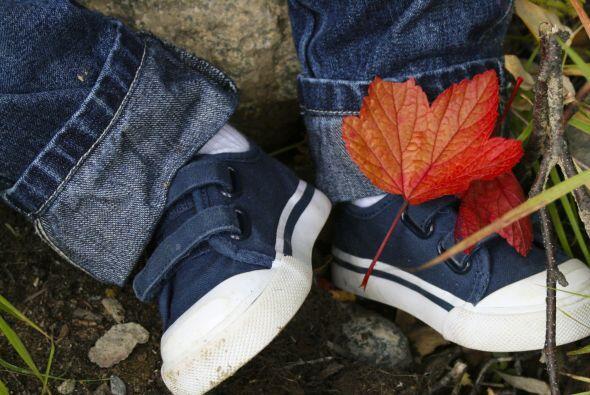 Las marcas no lo son todo. No confíes en que un zapato sea perfecto para...
