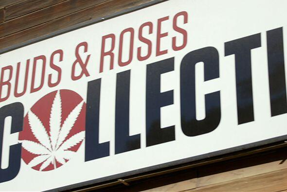 A su llegada a Los Ángeles, el doctor Juan se dirigió a Buds & Roses, un...