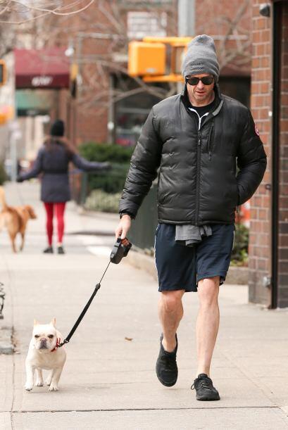 El actor tiene una bulldog francés que no se le despega ni un min...