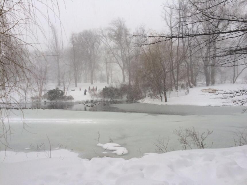 Neoyorquinos se aventuran en Central Park durante tormenta 1.JPG