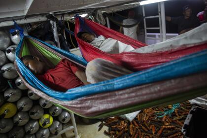 """Como él, miles de jóvenes y adultos han hecho de la pesca por buceo su forma de vida en la Mosquitia, una región de Honduras y Nicaragua enclavada en la costa caribe. También como él, muchos han sido víctimas de lo que Atiliano dice es un ataque de presión y que la medicina describe como el <b>""""síndrome de descompresión""""</b>, un padecimiento por el que se forman burbujas de nitrógeno en el cuerpo de los buzos y puede causar parálisis o incluso la muerte."""