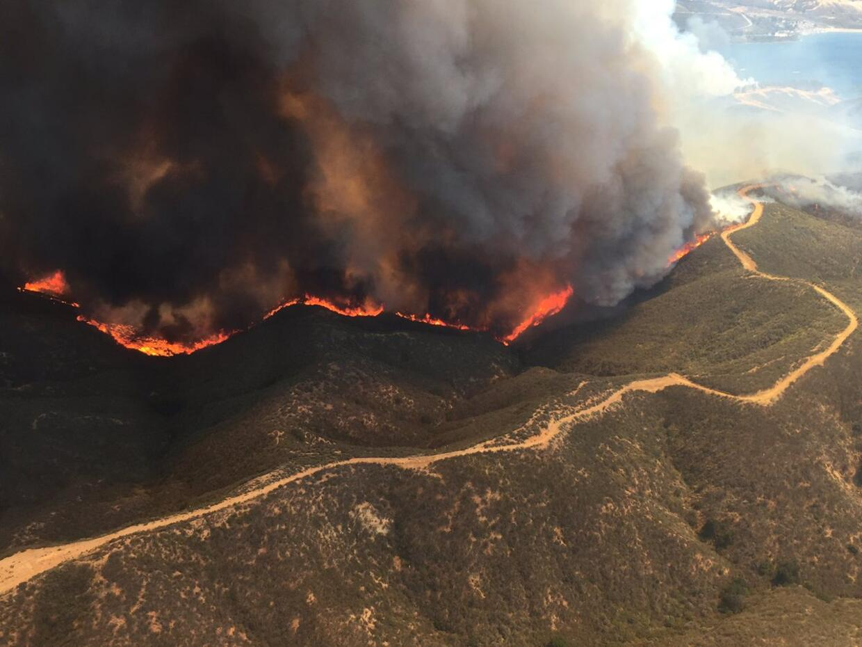 El fuego se ha extendido por más 800 acres en el área de C...