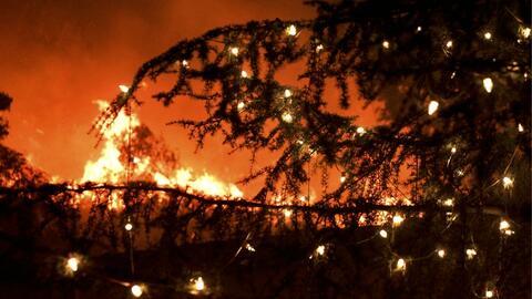 Luces de un árbol navideño en una de las zonas devastasdas...