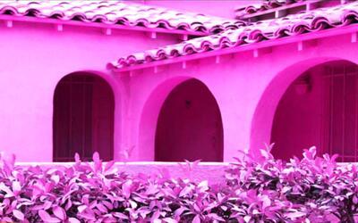 Un artista pinta de rosado tres casas y todo lo que las rodea en Mid-Cit...