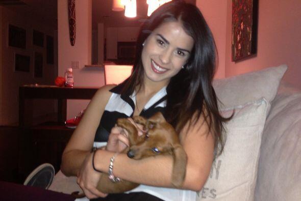 Hace tiempo estaba loca por tener un perrito y se cumplió su deseo.