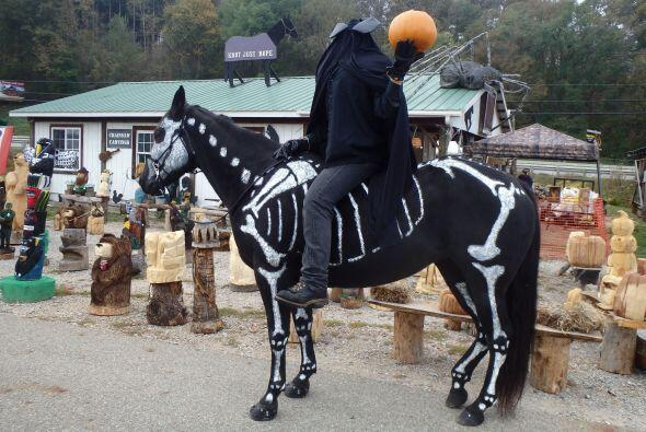 Sandy es dueña de una tienda de productos para caballos, y gracias a Rav...