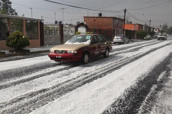 Y en una ciudad donde nunca nieva las calles quedaron teñidas de blanco.