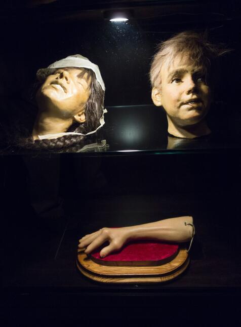 La exhibición está dividida en varios temas, expuestos en distintos espa...