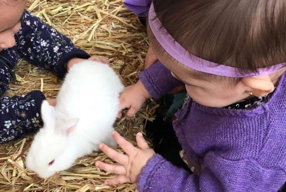 A Caro le encantan los animalitos.
