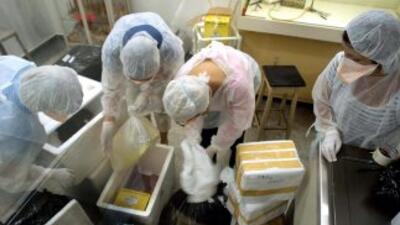 Los trabajadores podrían haber sido contaminados debido a un error en el...