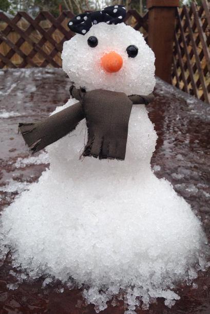 Ok, tal vez muñecos de hielo en varias partes ¡pero se ven...