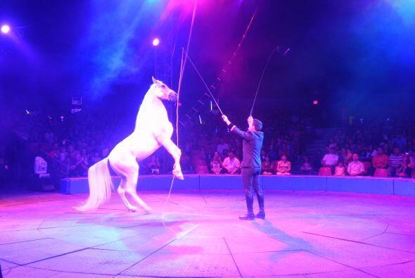 Artistas, acróbatas y hasta marcianos en el circo hermanos vázquez