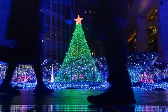 Un lindo árbol de navidad al centro, rodeado de cientos de luces azules...