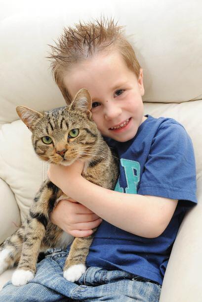 Este gato salvó del 'bullying' a su pequeño dueño a...
