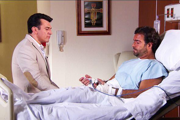 Hazle caso a Diego, Fernando. Debes regresar a México para reconquistar...